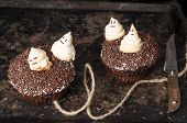 picture of funny ghost  - Two chocolate pumpkin cupcakes decorated with meringue ghosts - JPG