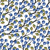foto of kiddie  - Watercolor Blueberries seamless pattern - JPG