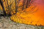 stock photo of greenpeace  - Mining disaster and water pollution in Romania - JPG