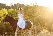 picture of horse-riders  - Beautiful woman on a horse - JPG