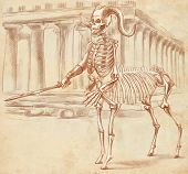 picture of centaur  - Illustration of a series of legendary animals and monsters  - JPG