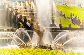 image of samson  - famous Peterhof fountain cascade near Saint - JPG