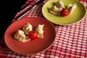 foto of no clothes  - Chinese jiaozi with tomato on green and red plates - JPG