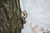 picture of wedding arch  - Part of wedding arch decoration at winter wedding - JPG