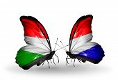 stock photo of holland flag  - Two butterflies with flags on wings as symbol of relations Hungary and Holland - JPG