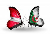stock photo of algeria  - Two butterflies with flags on wings as symbol of relations Latvia and Algeria - JPG