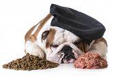 stock photo of debate  - dog food debate  - JPG