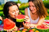 image of manicured lawn  - Two young happy girlfriends picnicking on the lawn on green grass and enjoying watermelon