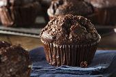 stock photo of chocolate muffin  - Homemade Dark Chocolate Muffins to Eat at Breakfast - JPG