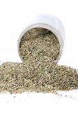 picture of catnip  - Dried green catnip for cats spilling from container on a white background
