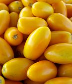 Yellow Plum Tomatoes