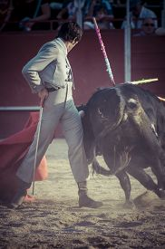 stock photo of bullfighting  - Entertainment - JPG