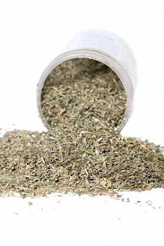 stock photo of catnip  - Dried green catnip for cats spilling from container on a white background  - JPG