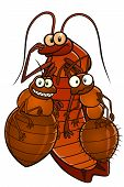 image of cockroach  - Cartoon cockroach - JPG