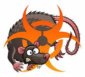 picture of rats  - Cartoon grey rat with biohazard sign - JPG