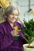 foto of ordinary woman  - Smiling positive aged woman watering decorative flowers on balcony - JPG