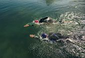 picture of triathlon  - View of swimmers in water - JPG