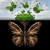 stock photo of butterfly-bush  - Strong foundation concept as the roots of a plant shaped as a butterfly and the leaves of a bush in the shape of flying butterflies as a creative base symbol and the power of freedom and imagination - JPG