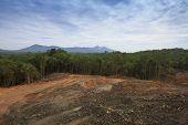 stock photo of deforestation  - Deforestation environmental damage - JPG