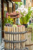 stock photo of wine-press  - press to crush the grapes and make wine with nice composition of flowers - JPG