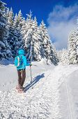 foto of down jacket  - Young woman in blue down jacket with backpack walking in show shoes with sticks in winter mountains scenery - JPG