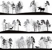 Постер, плакат: set of different landscapes with trees and animals