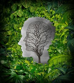 stock photo of dead plant  - Inside depression concept and inner feelings of distress as a mental health symbol with a healthy green plant jungle window shaped as a human head and a dead tree as a suffering face for psychology examination - JPG