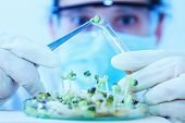 Постер, плакат: Scientist Working scientists Working At The Laboratory scientist Leaning Against The Whiteboard In L