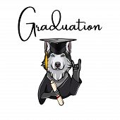 Siberian Husky Graduate. Dog With Diploma, Graduate S Cap And Horns Rock Gesture . Vector Illustrati poster