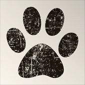 picture of mew  - Print black paws on a white background - JPG