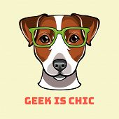 Jack Russell Terrier Geek. Dog In Smart Glasses. Geek Is Chic Text. Vector Illustration. poster