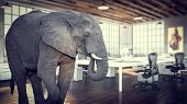 elephant in the room, modern industrial office 3d rendering image poster