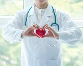 Cardiovascular Disease Doctor Or Cardiologist Holding Red Heart In Clinic Or Hospital Exam Room Offi poster