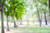 Blurred Background, Blur Tree Park With Bokeh Light, Nature Background, Sprinng, Summer Season poster