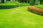 Green Lawns, Front Lawn For Background, Garden Design, Beautiful Shady Landscape, Garden With A Fres poster