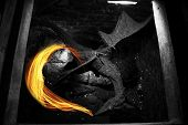 A Black Dragon Spits Fire In The Basement Of An Old Castle.dragon In Captivity. The Black Dragon Spi poster