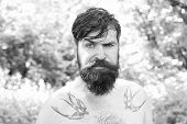 The Masculine Nature. Masculine Guy With Tattoo On Shoulders On Summer Landscape. Bearded Man Shirtl poster