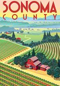 Romantic Rural Landscape In Sunny Day In Sonoma County, Usa, With Vineyards, Farms, Meadows, Fields  poster