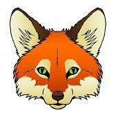 image of sneaky  - A hand drawn vector of a red fox - JPG