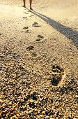 stock photo of footprints sand  - footprints in the sand at sunset time - JPG