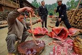 Asians, Chinese Peasants, Farmers, Gutting Pig On Village Streets.
