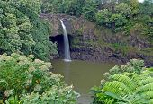 Quiet waterfall into Pond, in Hawaii