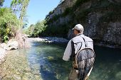 picture of trout fishing  - Fly fisherman fishing trouts in freshwater river - JPG