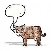 pic of moo-cow  - cartoon cow - JPG