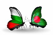 foto of bangladesh  - Two butterflies with flags on wings as symbol of relations Bulgaria and Bangladesh - JPG