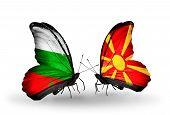 stock photo of macedonia  - Two butterflies with flags on wings as symbol of relations Bulgaria and Macedonia - JPG