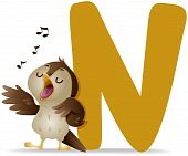 picture of nightingale  - An Illustration Of An N for Nightingale with Clipping Path - JPG