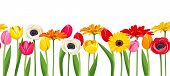 stock photo of gerbera daisy  - Vector horizontal seamless background with colorful gerbera - JPG