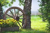 picture of cart  - Old wooden cart wheel decoration for the garden - JPG