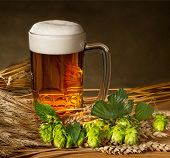 foto of suds  - pint of beer with hops and barley - JPG